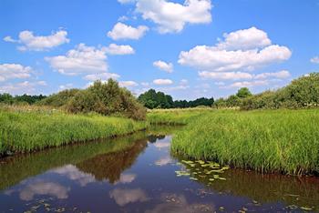 Varsinais-Suomelle ilmastovastuujaosto edistämään maakunnan ilmastotyötä