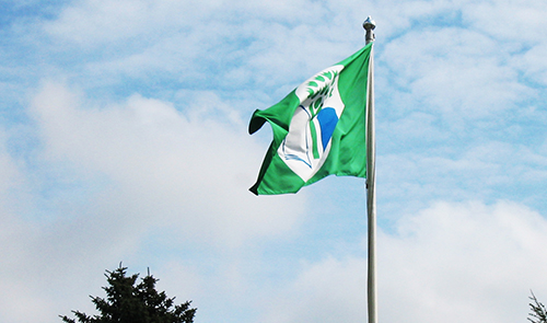 Vihreä lippu -koulut