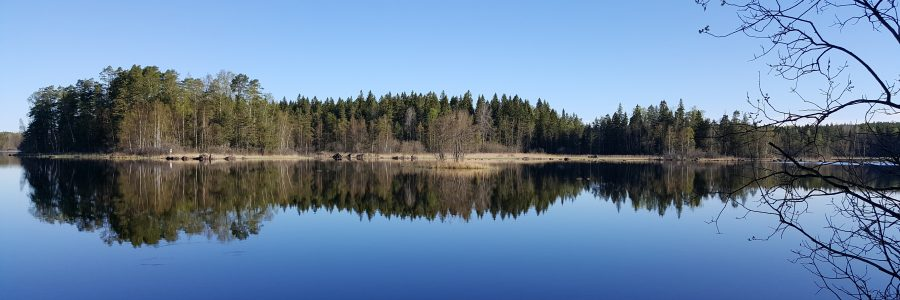 Metsät ja vesiensuojelu -tilaisuus Salossa 21.3.