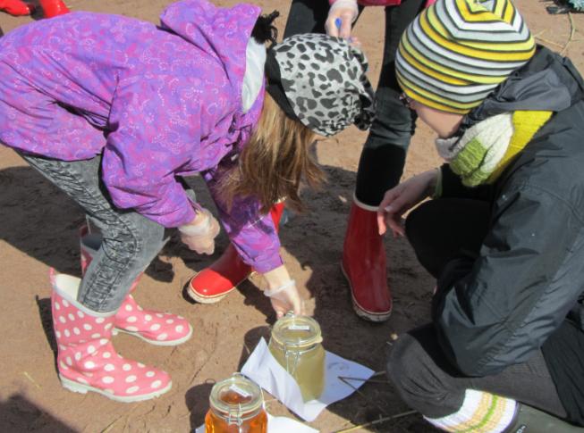 Lapsia tutkimassa vesinäytteitä