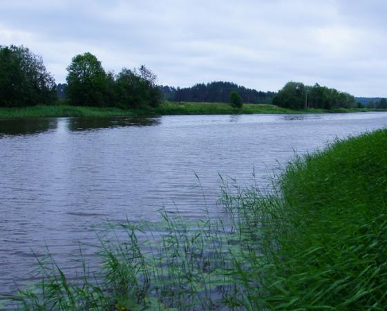 Paimiosta uusin Hinku-kunta – haluaa jatkaa ilmastotyötään yhdessä muiden kuntien kanssa