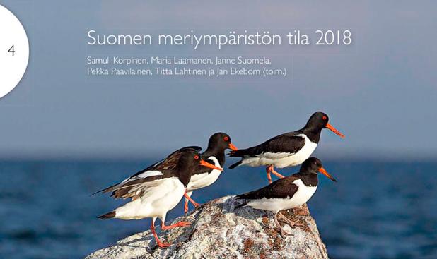Meriympäristön tila 2018 kansikuva teksteillä