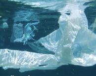 Forum för skärgårdsforskning – Den fantastiska, fruktansvärda plasten 10.5. Korpoström