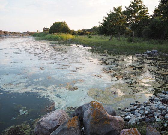Vaikuta vesiin Nyt -infoja Saaristomerellä pitkin kesää