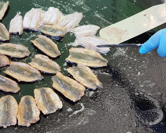Kalaherkut haltuun -hanke tutustuttaa kotimaiseen kalaan