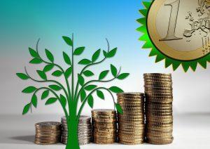 vihreä puu ja eurokolikoita