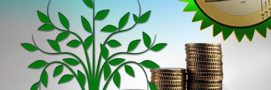 Motivan hankintapalveluiden uutiskirjeessä puhetta kestävistä hankinnoista