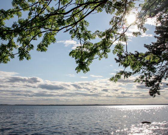 Jätevesi-infoja Lounais-Suomen alueella syyskuussa 2019