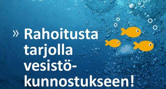 Virtaa vesistökunnostukseen – hankkeiden rahoitushaku 15.10. alkaen