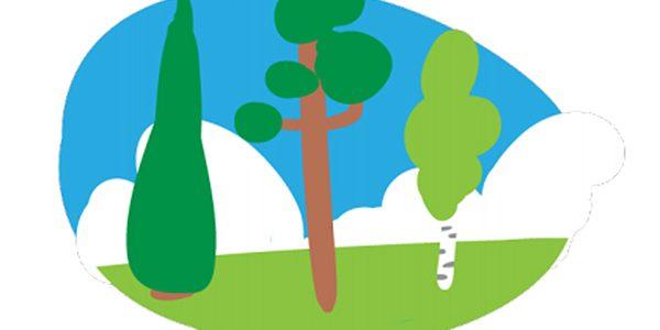 Metsien käytön suunnittelun avuksi hiilipäästöjen arviointityökalu