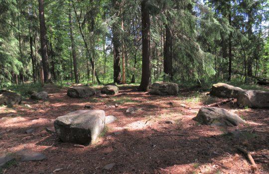 Kiviä ringissä metsän keskellä.