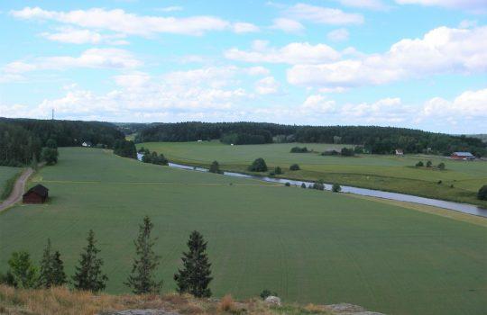 Kuvassa näkyvät laajat vihreät peltomaisemat. Vasemmassa laidassa näkyy hiekkatie ja sen oikealla puolella vanha punainen lato. Oikealla virtaa Aurajoki ja pellot jatkuvat joen toisella puolella metsänrajaan asti. Oikeassa laidassa näkyy myös joitakin maatilarakennuksia.