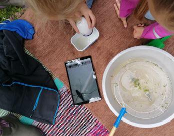Paimionjoki-yhdistyksen vesitutkimuspäivät kouluilla