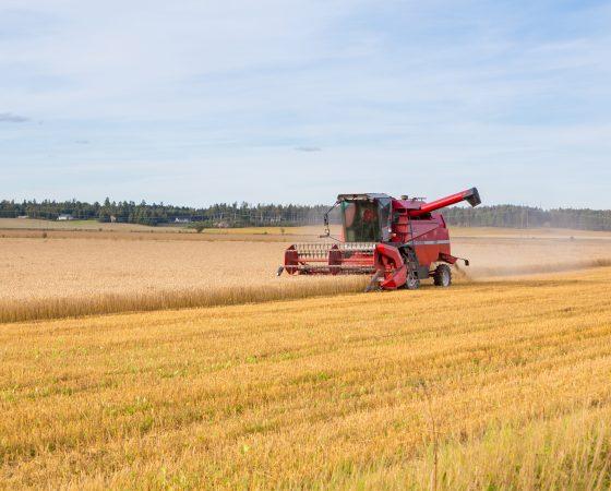 Yritystuet lisäävät maaseudun elinvoimaa