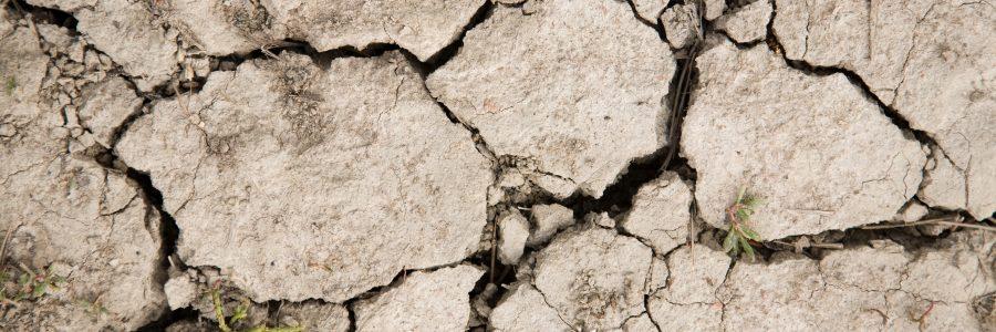 Ilmastopaneeli varoittaa tulevassa raportissaan ilmastonmuutoksen synkistä vaikutuksista